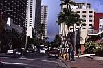 最近の一枚 'Waikiki Rainbow'